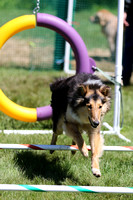 LM6A5463_Agility Intro - Bridget 945AM
